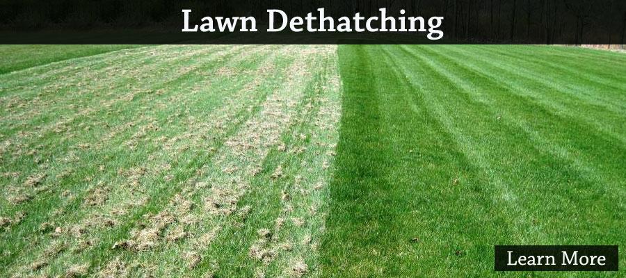 Lawn Dehatching Shawano WI 54166